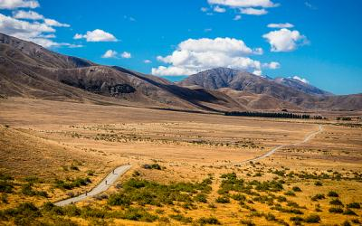 Molesworth High Country Station - MoaTours