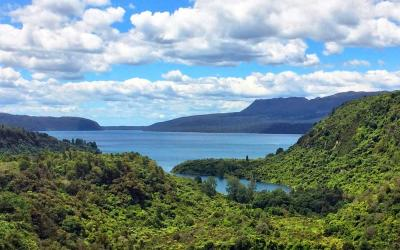 Views of bush clad Lake Tarawera