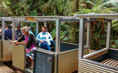 Riding the rainforest railway in Paparoa National Park