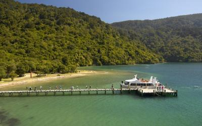 Visitors at Ship Cover in the Marlborough Sounds
