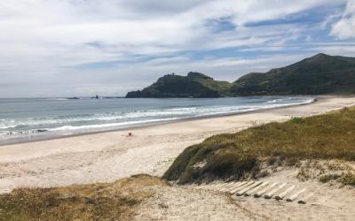 Awana Beach on Great Barrier Island