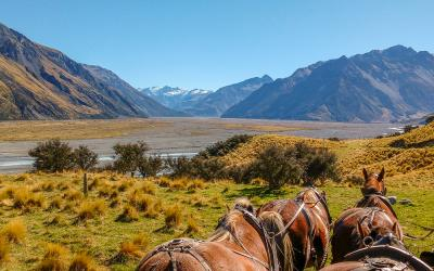 Views of the Southern Alps on the wagon ride at Erewhon Station in Canterbury