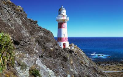 Cape Palliser Lighthouse - Wairarapa Tour