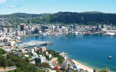 Wellington City Views - Wairarapa Tour