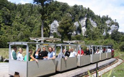 Nile River Rainforest Train