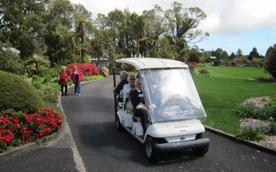 Touring Pukeiti Gardens in Taranaki by electric buggy