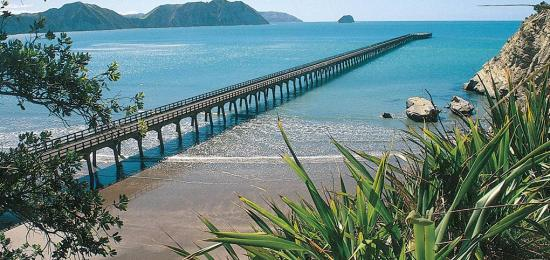 The longest wharf in New Zealand at Tologa Bay - MoaTours