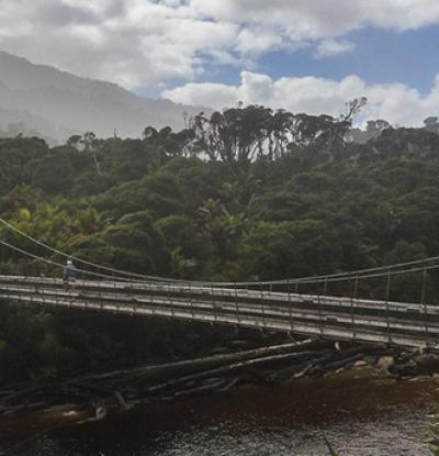 Walker crossing the Kohaihai River swingbridge on the West Coast