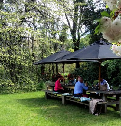Guests enjoying an outdoor lunch amongst spring blossoms at Akaunui Homestead in Canterbury