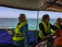 Day 3 Cruise Chaddys Lifeboat Sugar Loaf Islands Guests