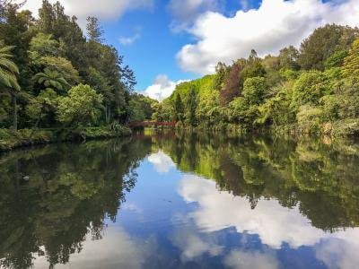 Lake reflection at Pukekura Park New Plymouth