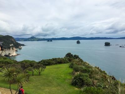 Cathedral Cove view