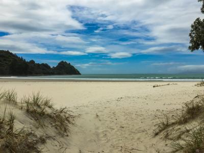 Golden sand of Whangapoua Beach Coromandel