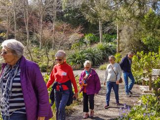 Visitors walking through Pepped Warbeck garden in Wellington